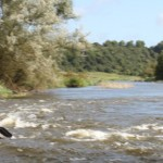 home_banner_boynevalley