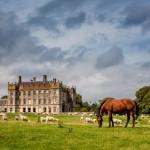 manorhousehorse
